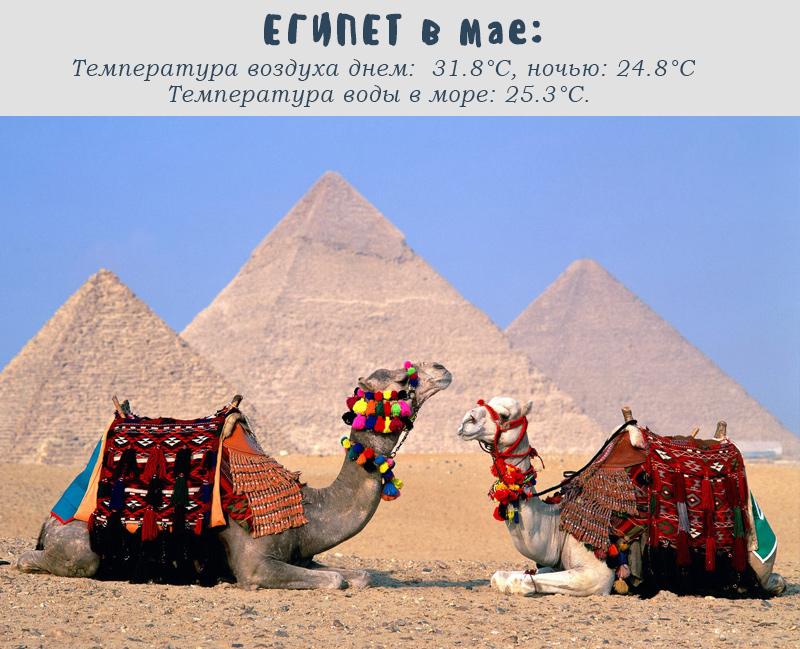 в Египте температура в мае