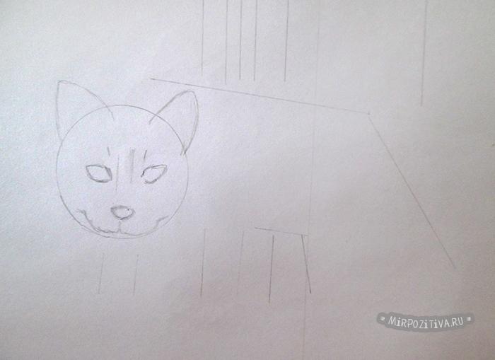 рисуем нашу кошку