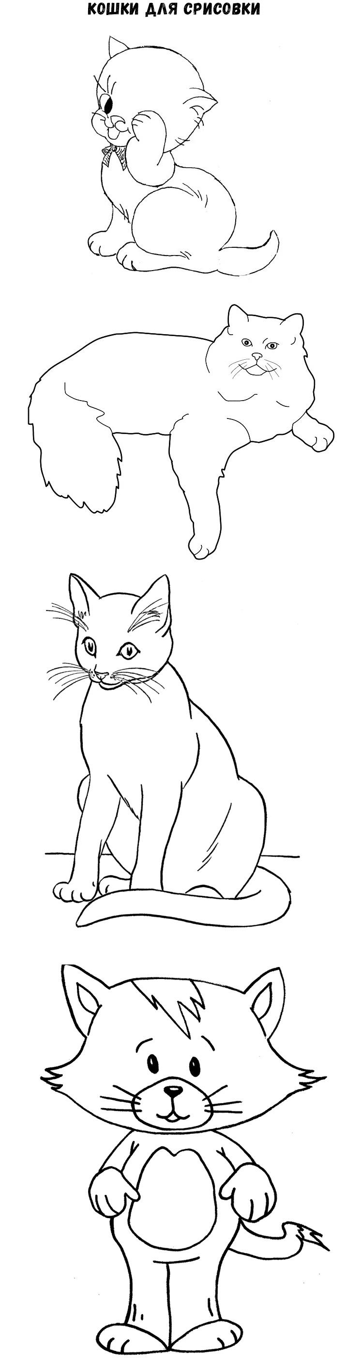 кошки для срисовки