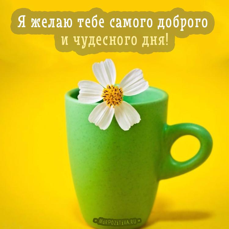 Я желаю тебе самого доброго и чудесного дня!