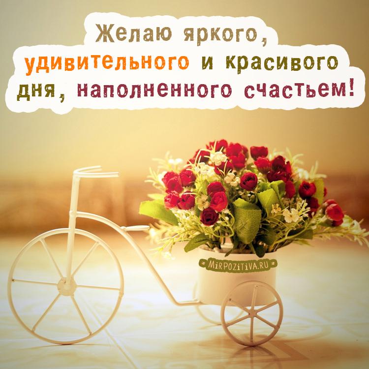 Желаю тебе яркого, удивительного и красивого дня, наполненного счастьем!