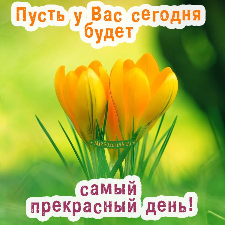 Пусть у Вас сегодня будет самый прекрасный день!