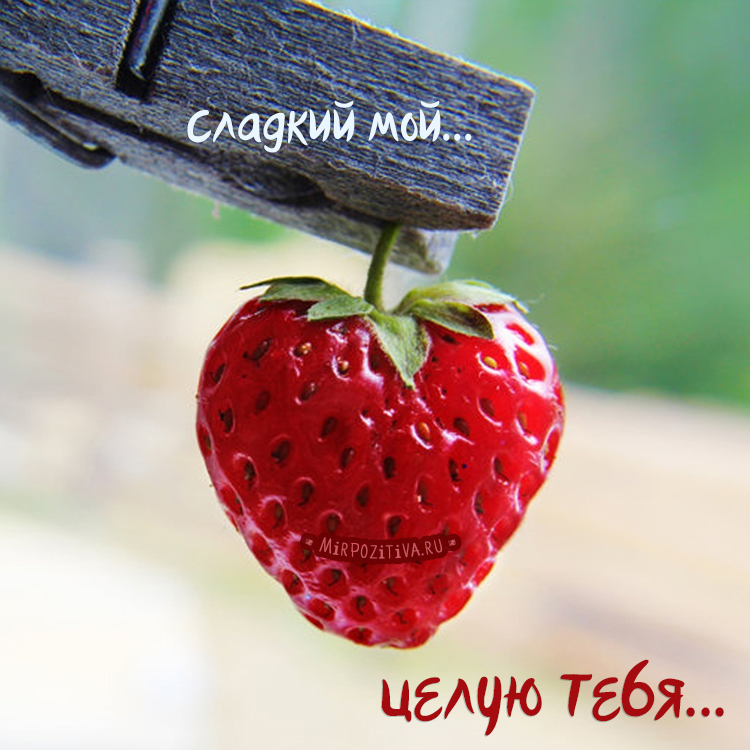 клубничка, сладкий мой, целую тебя...