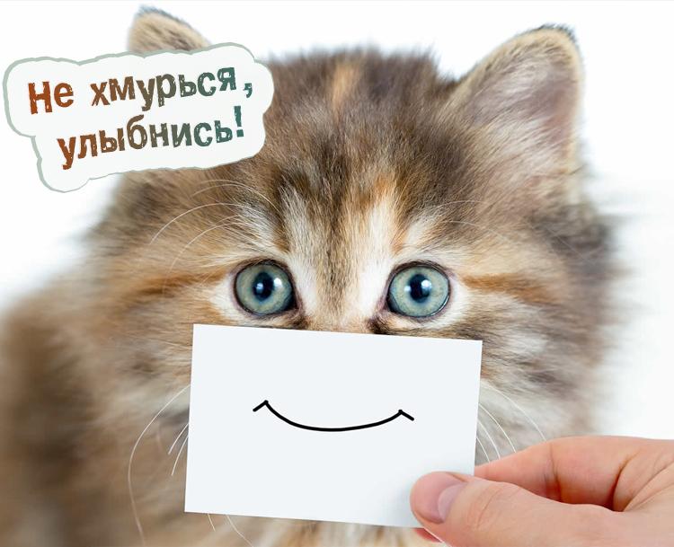 Не хмурься, улыбнись!