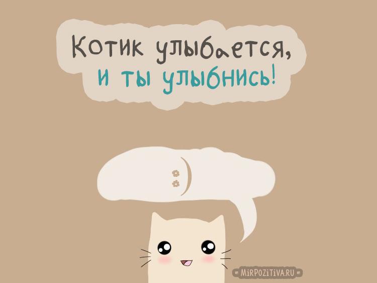Котик улыбается, и ты улыбнись!