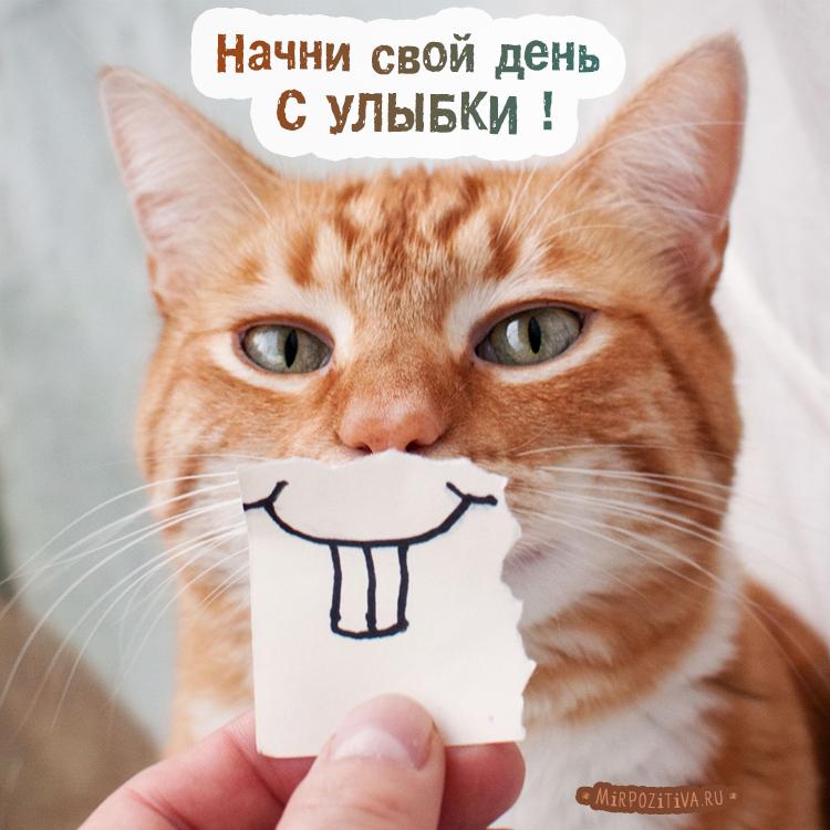 Начни свой день с улыбки !