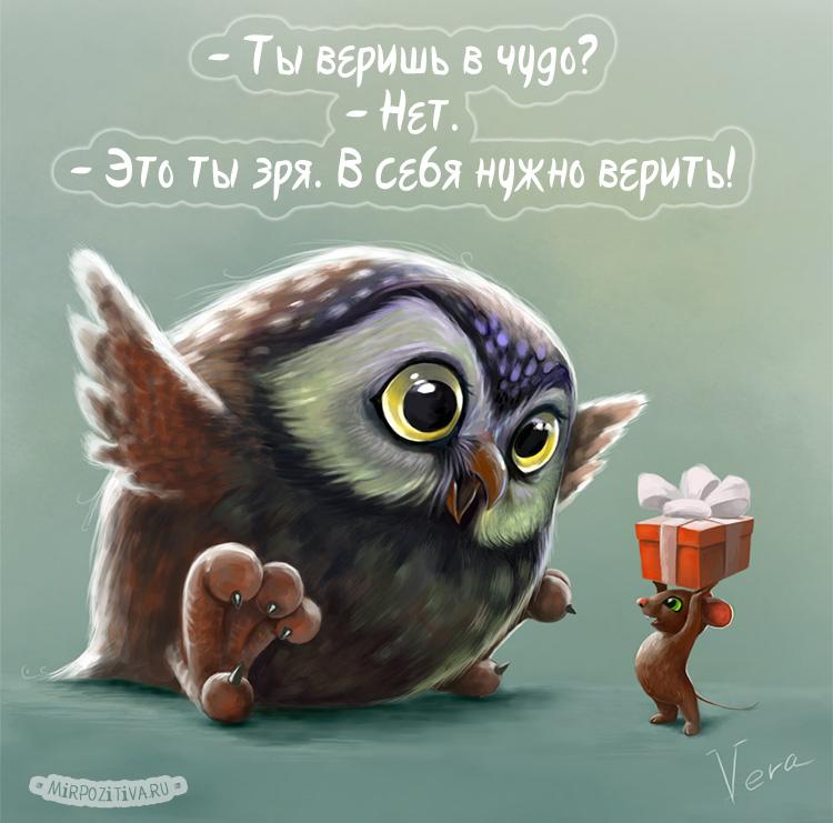 Подборка фото и картинок мудрых сов