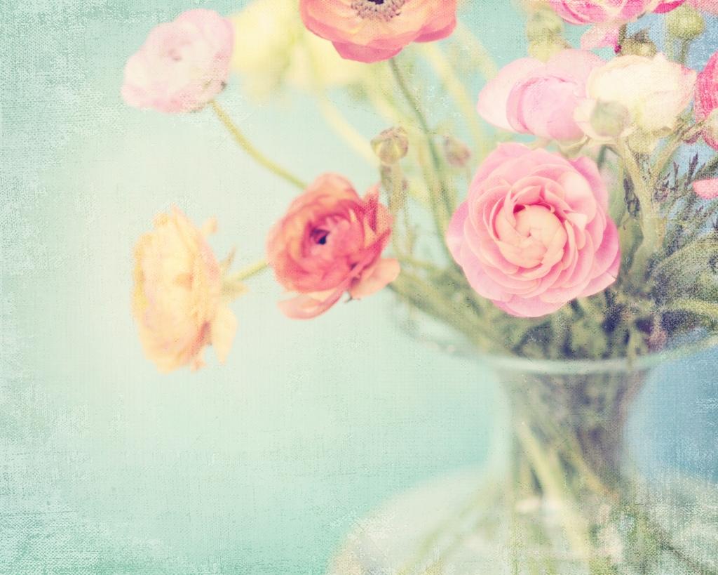 цветы нежные