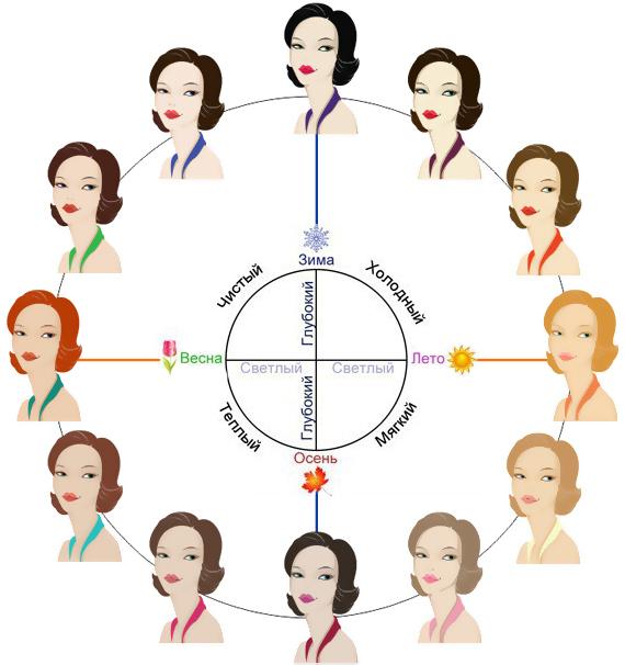 круг 12 цветотипов внешности