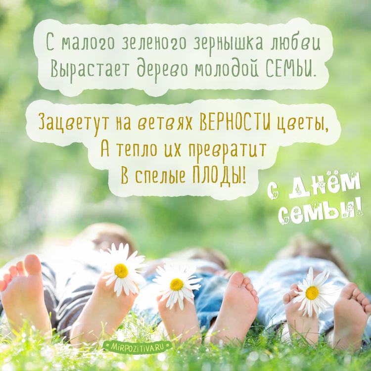 С малого зеленого зернышка любви Вырастает дерево молодой семьи.