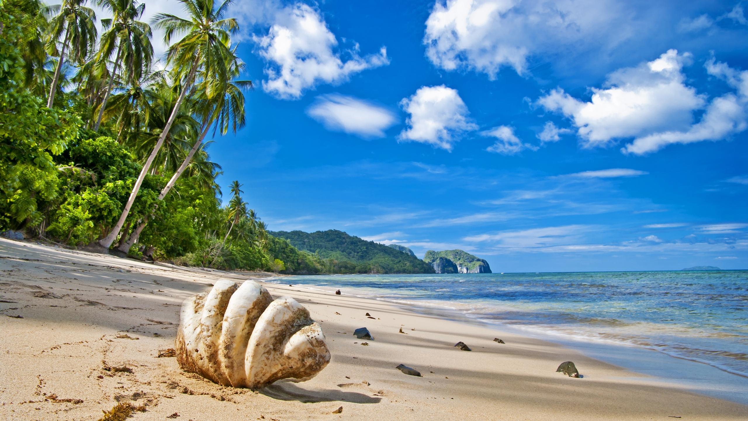 берег песок на пляже