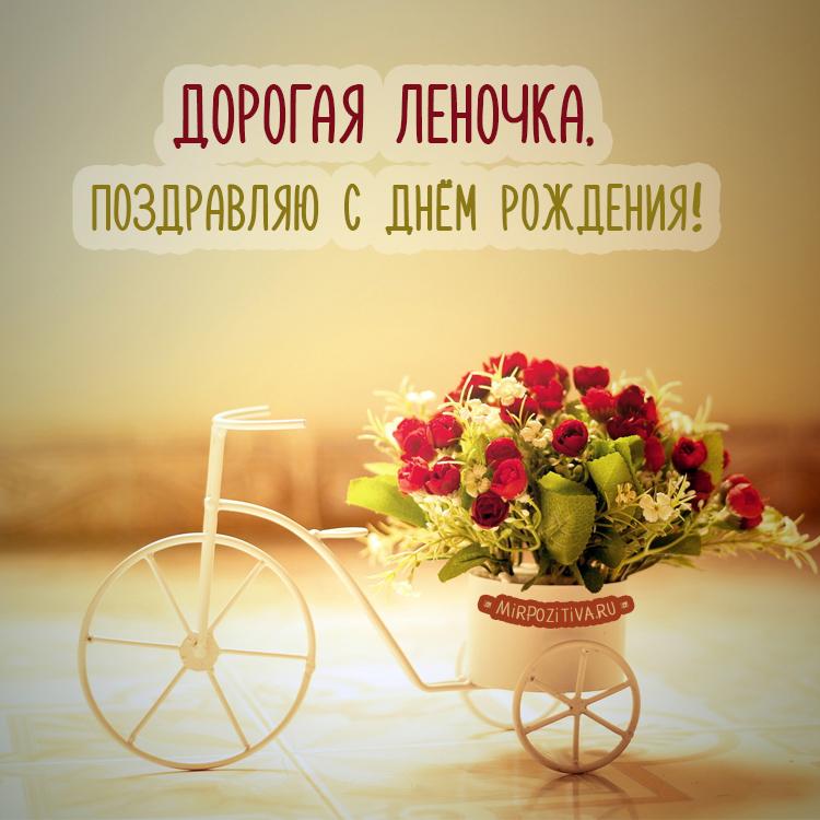 Дорогая Леночка, поздравляю с днём рождения!