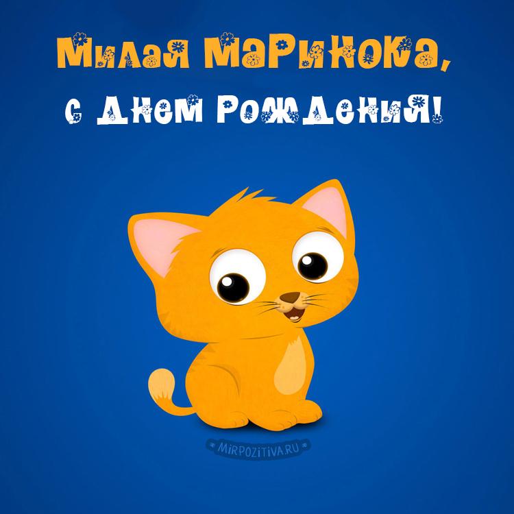 котенок Милая Маринока, с днем рождения!