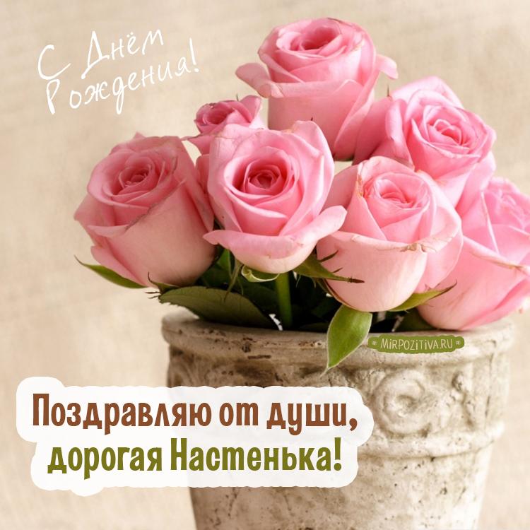 нежные розы - Поздравляю от души, дорогая Настенька!