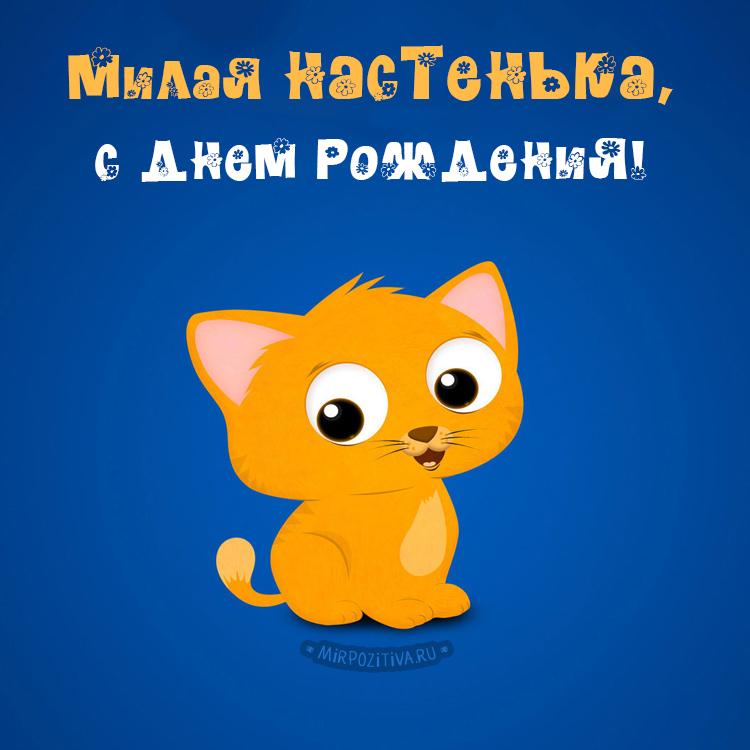 котенок Милая Настенька, с днем рождения!