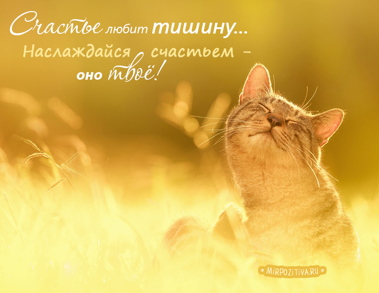 Счастье любит тишину... Наслаждайся счастьем оно твоё