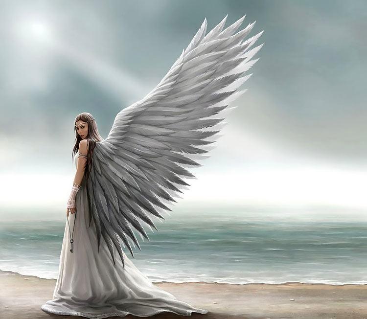 взрослый ангел