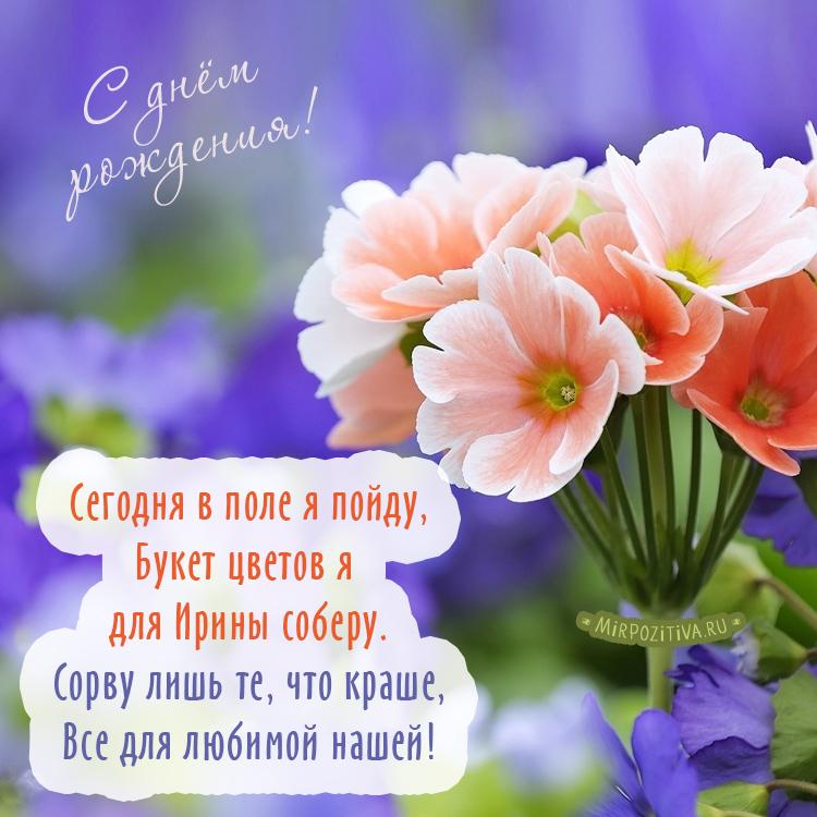 Розовые цветы на фиолетовом фоне - Сегодня в поле я пойду, Букет цветов я для Ирины соберу