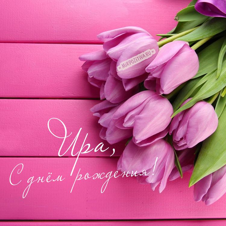 тюльпаны Ира, с днём рождения