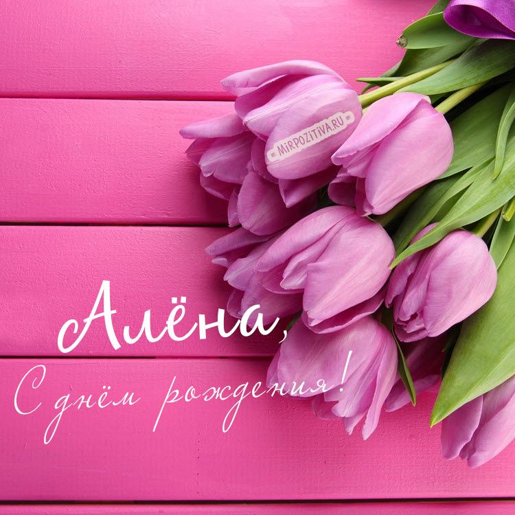 розовые тюльпаны - Алёне в день рождения