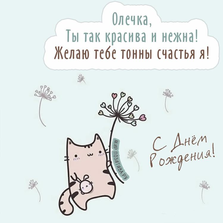 котик и цветок Олечка, Ты так красива и нежна! Желаю тебе тонны счастья я!