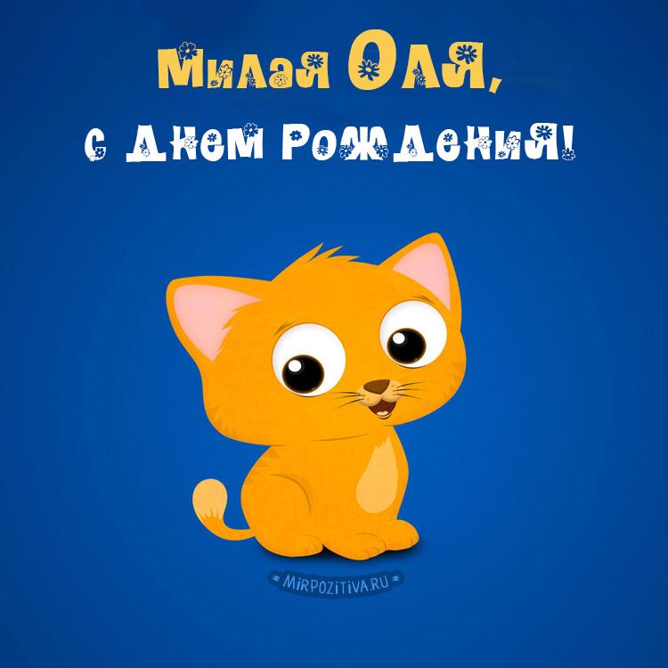 котенок - милая Оля