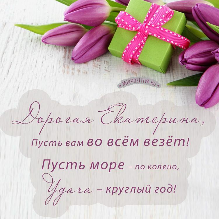 тюльпаны для дорогой Екатерины