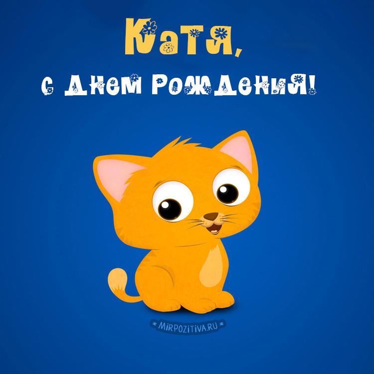 котенок - Катя, с днем рождения!