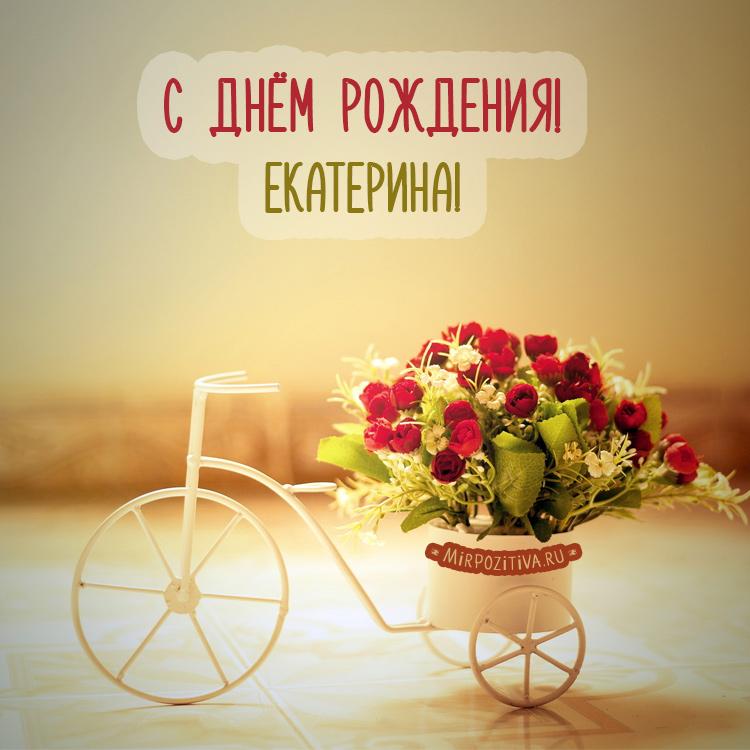цветы для Екатерины розы на велосипеде