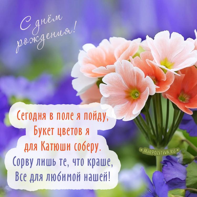 Сегодня в поле я пойду Букет цветов я для Катюши соберу