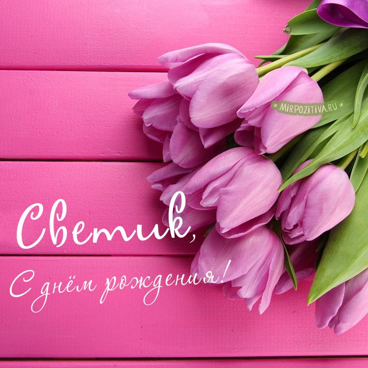 тюльпаны Светик с днем рождения