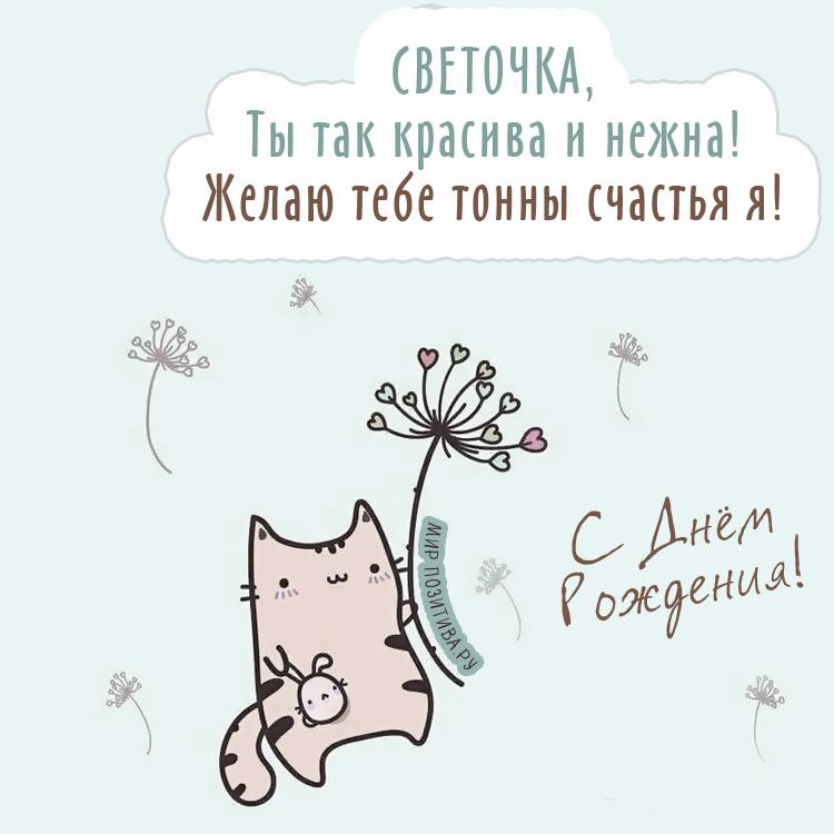 котик с цветами - СВЕТОЧКА, Желаю тебе тонны счастья я!