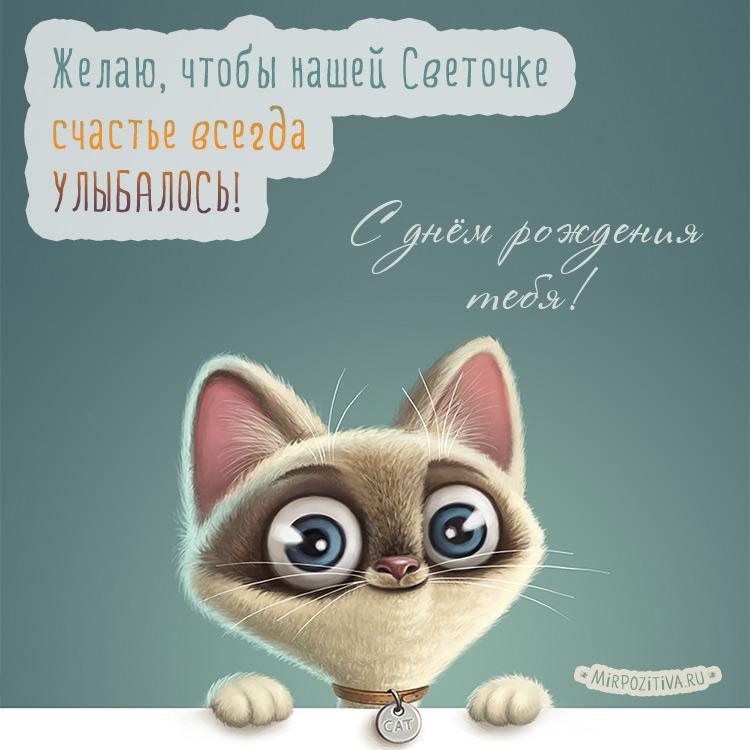 котенок - Желаю, чтобы нашей Светочке счастье всегда УЛЫБАЛОСЬ!
