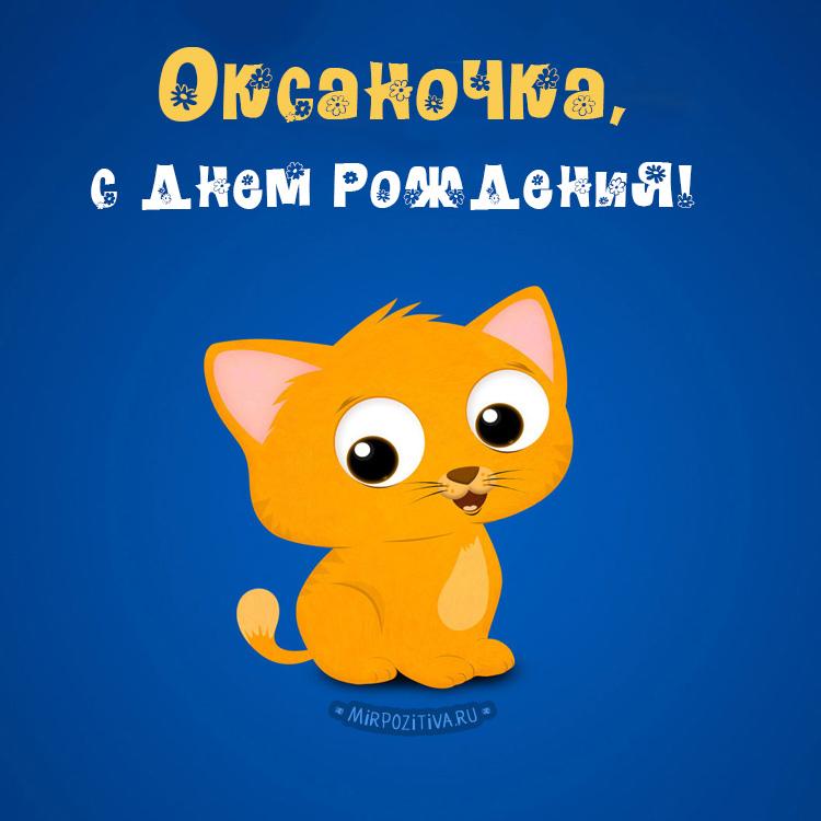 котик - Оксаночка, с днем рождения!