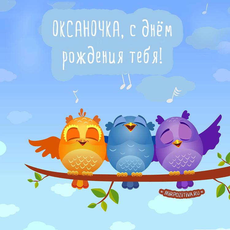 птички совы на дереве Оксаночке поют с днем рождения