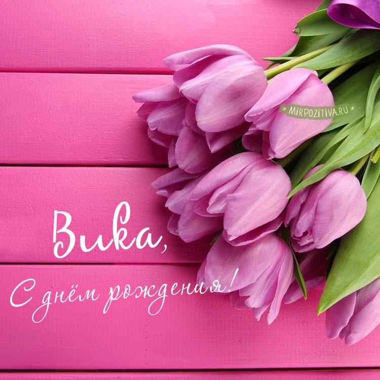 розовые тюльпаны для Вики