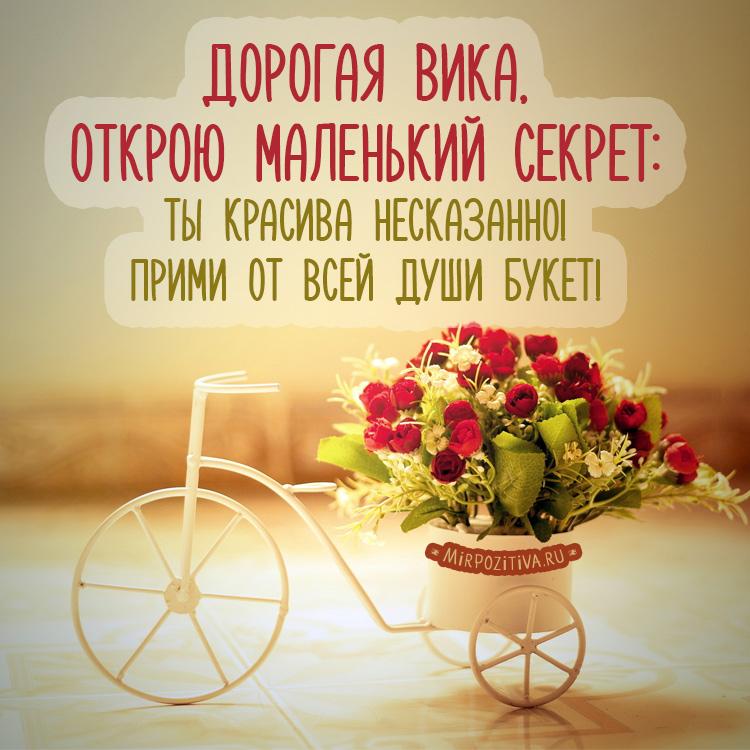 букет роз на велосипеде