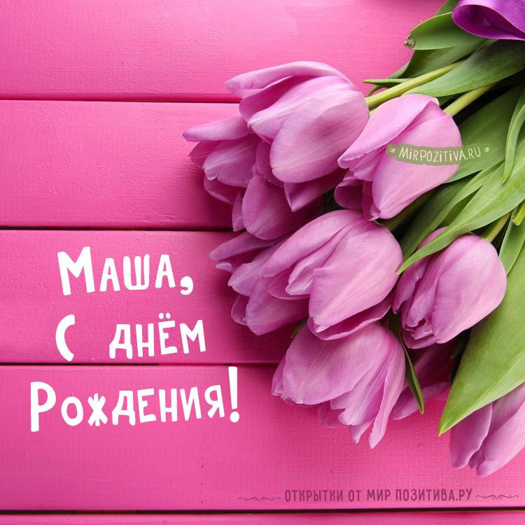 Маша тюльпаны открытка