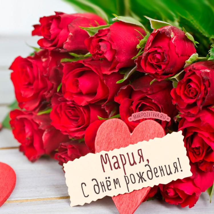 красные розы Мария с днем рождения