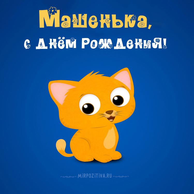 котенок Машенька