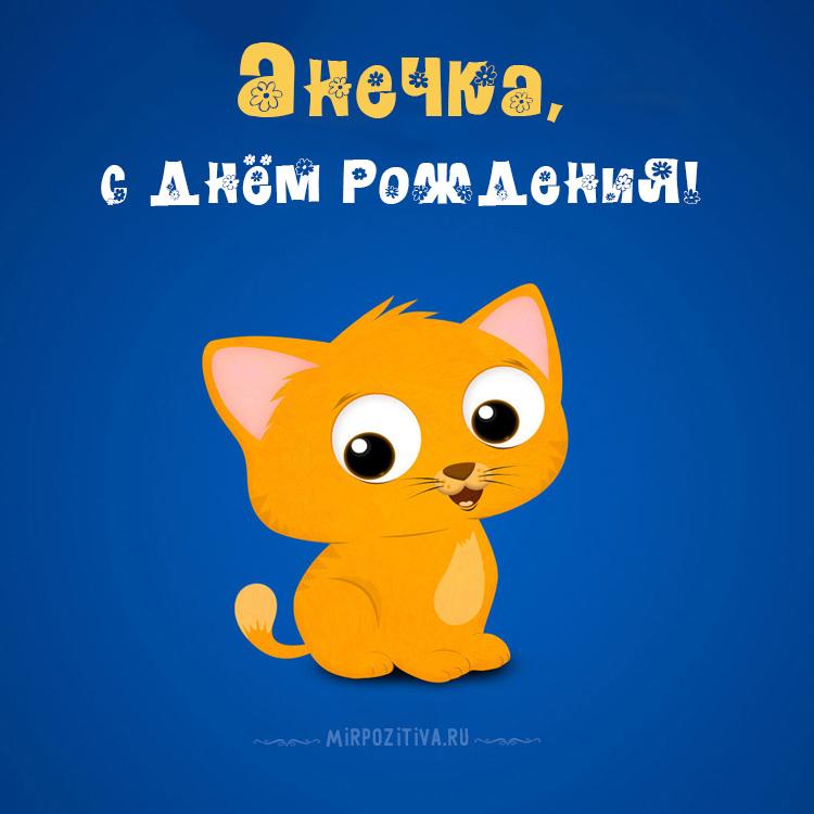 котенок Анечка с днем рождения