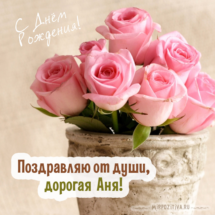 розовые розы на день рождения Ане