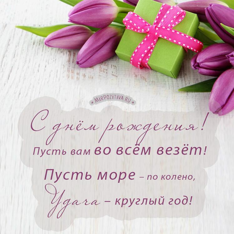 тюльпан подарок