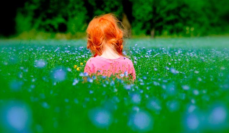 рыжая девочка в поле