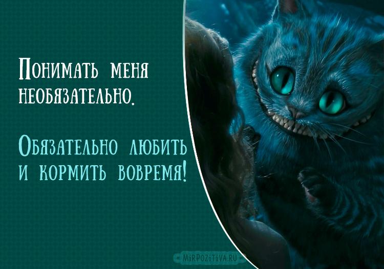 кот из Алисы в стране чудес