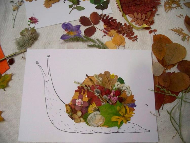 как оригинально оформить гербарий