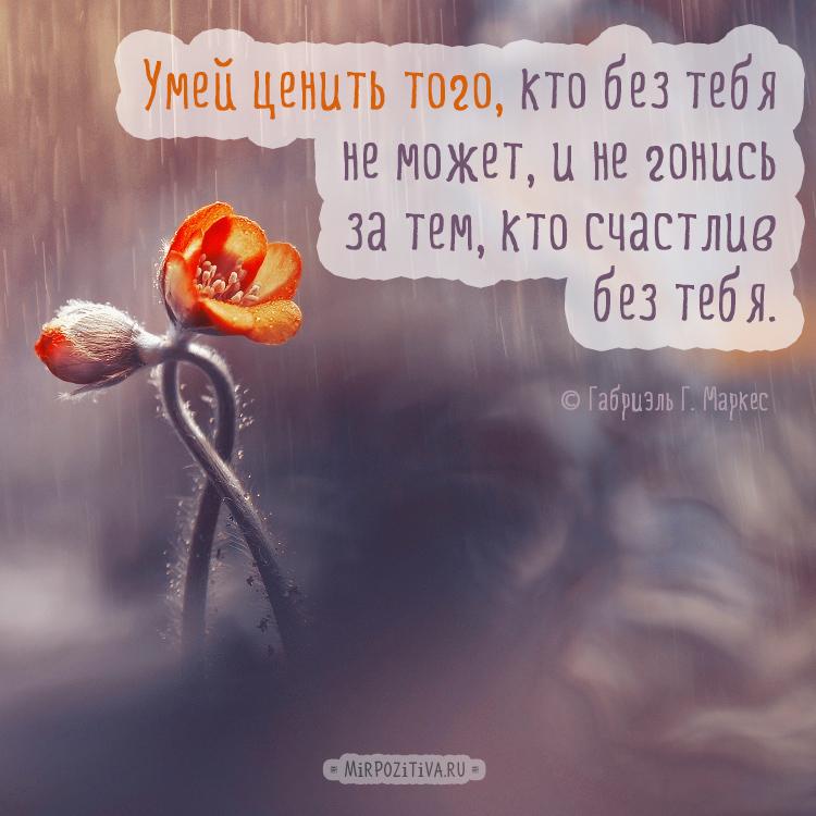 Умей ценить того, кто без тебя не может, и не гонись за тем, кто счастлив без тебя.