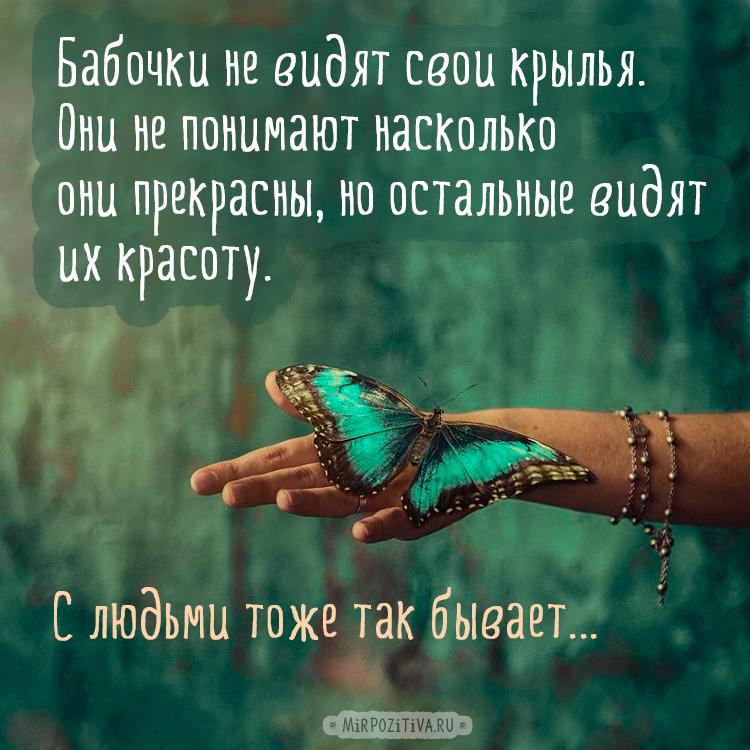 Бабочки не видят свои крылья. Они не понимают насколько они прекрасны, но остальные видят их красоту. C людьми так же