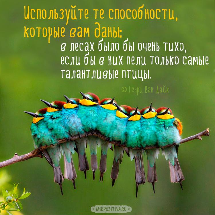 Используйте те способности, которые вам даны: в лесах было бы очень тихо, если бы в них пели только самые талантливые птицы