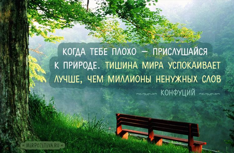 Когда тебе плохо — прислушайся к природе. Тишина мира успокаивает лучше, чем миллионы ненужных слов. Конфуций